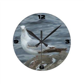Reloj de pared de la gaviota