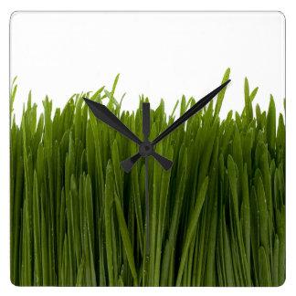 Reloj de pared de la hierba del trigo