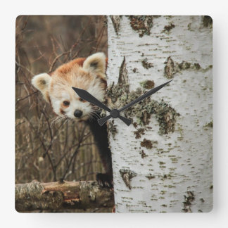 Reloj de pared de la panda roja
