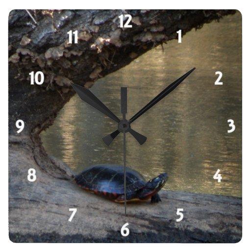 Reloj de pared de la tortuga