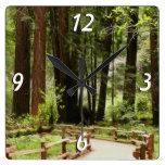Reloj de pared de la trayectoria de maderas de Mui