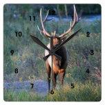 Reloj de pared de los ciervos de Bull de los alces