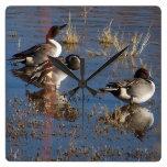 Reloj de pared de los pájaros del pato del pato ro