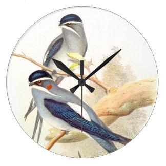 Reloj de pared de los pájaros del trago de Goulds