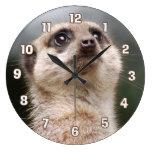 Reloj de pared de Meerkat