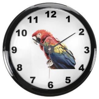 """Reloj de pared del diseño del """"Macaw"""" Relojes Acuario"""
