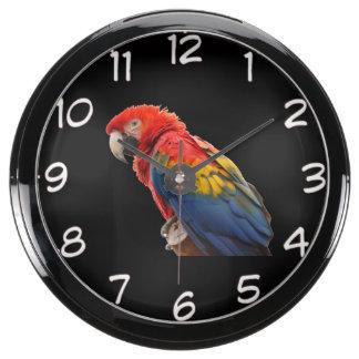 "Reloj de pared del diseño del ""Macaw rojo"" Reloj Aquavista"