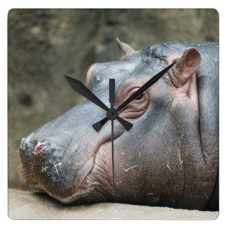 Reloj de pared del Hippopotamus