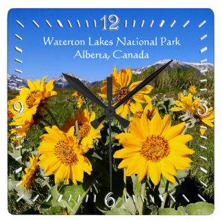 Reloj de pared del parque nacional de los lagos