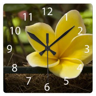 Reloj de pared del Plumeria