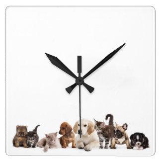 Reloj de pared lindo del panorama del mascota