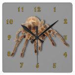 Reloj de pared llano del Tarantula