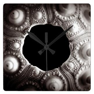 Reloj de pared negro y blanco del erizo de mar