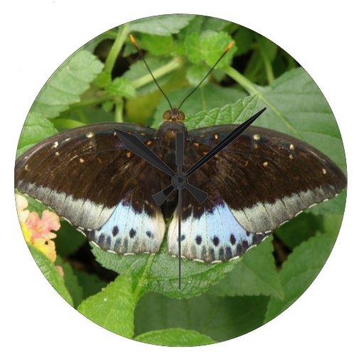 Reloj de pared tropical bonito de la mariposa