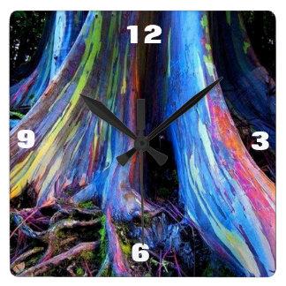 Reloj del ÁRBOL de EUCALIPTO del ARCO IRIS
