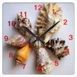 Reloj del arreglo del Seashell