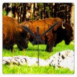 Reloj del bisonte