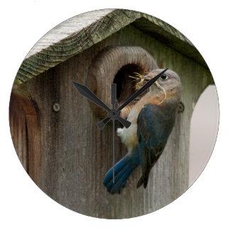Reloj del Bluebird de la jerarquización