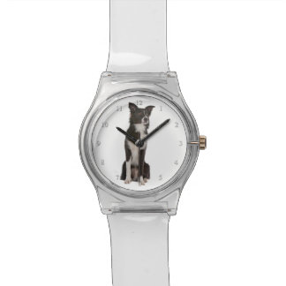 Reloj del border collie