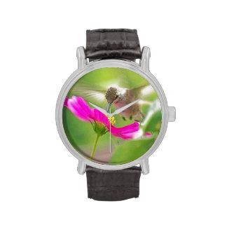 Reloj del colibrí del bebé