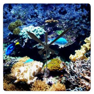 Reloj del cuadrado del acuario del agua salada