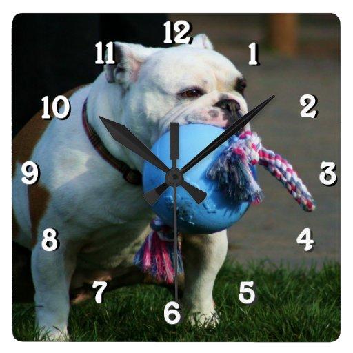 Reloj del cuadrado del perro del dogo