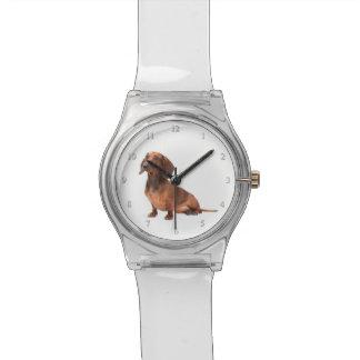 Reloj del Dachshund