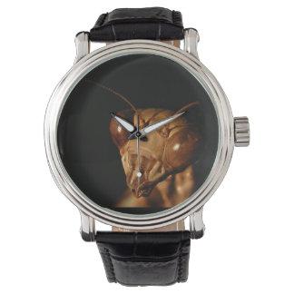 Reloj del ~ del predicador que caza