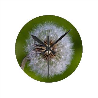 Reloj del diente de león