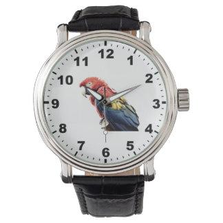 "Reloj del diseño del ""Macaw"""