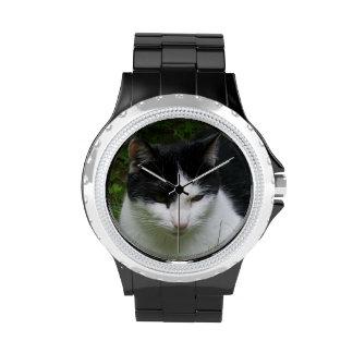 Reloj del gato