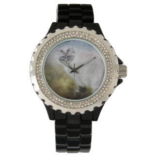 Reloj del gato de Ragdoll