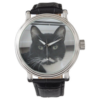 Reloj del gato del bigote