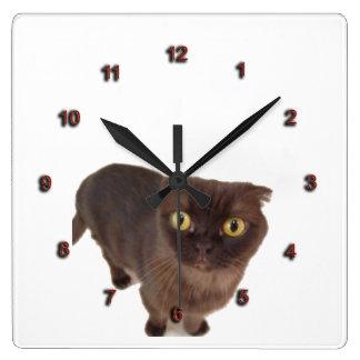 Reloj del gato del doblez del escocés