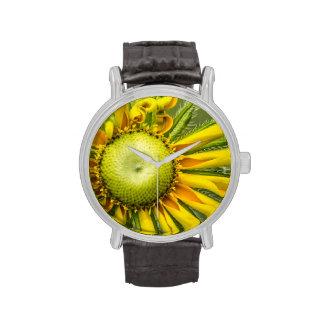 Reloj del girasol