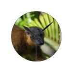 Reloj del Lemur de Brown