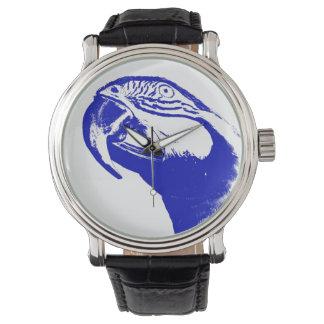 Reloj del loro del Macaw