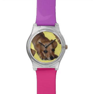 Reloj del modelo May28th del perrito de Chiweenie