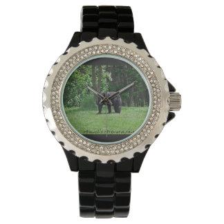 Reloj del oso