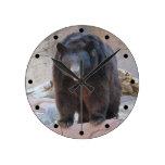 Reloj del oso negro