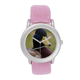 Reloj del pato