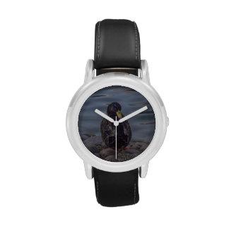 Reloj del pato de sentada