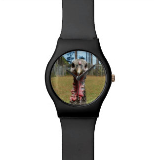 reloj del pavo