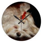 Reloj del perrito el dormir del tiempo de la siest
