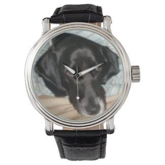 Reloj del perro de aguas de saltador