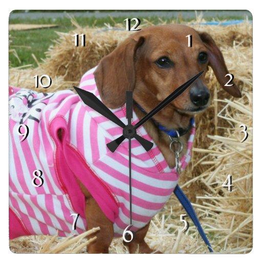 Reloj del perro del Dachshund