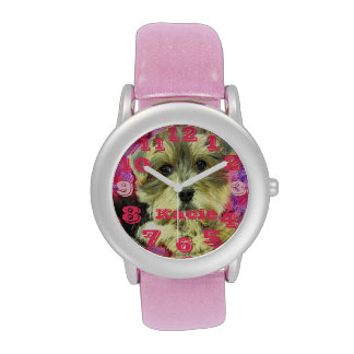 reloj del rosa del morkie