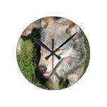 Reloj del vagabundeo del lobo