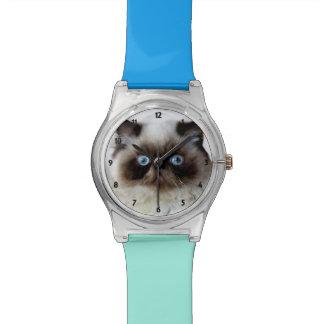 Reloj divertido del gato May28th