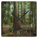 Reloj escénico de los Naturaleza-amantes del bosqu
